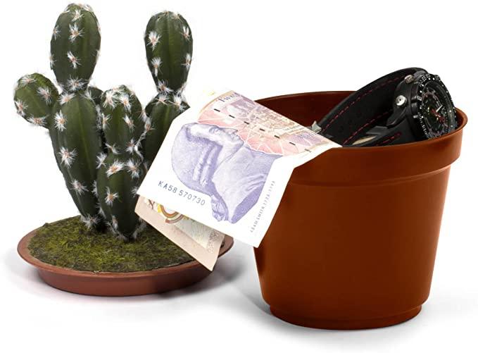 Leroy Cajas fuertes cactus